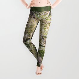 Girl scout cookie bud Leggings