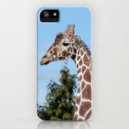 Reticulated giraffe iPhone Case