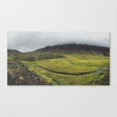green for days Canvas Print
