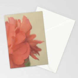 Zonal Pelargonium Flower Stationery Cards