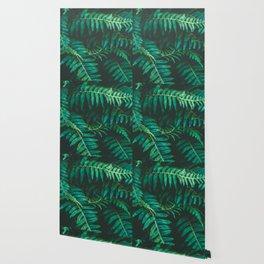 Ferns II Wallpaper