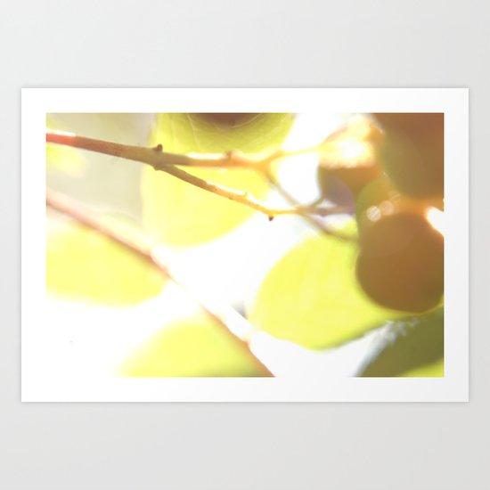 Macro flower 5 Art Print
