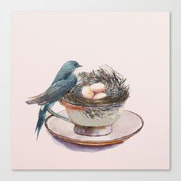 Bird nest in a teacup Canvas Print
