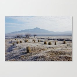 Snowy Steppes Canvas Print