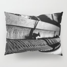 DUSTED Pillow Sham