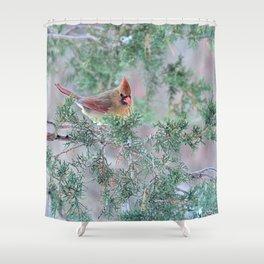 Pretty Female Cardinal Shower Curtain