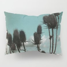 Prickly Teasels  Pillow Sham