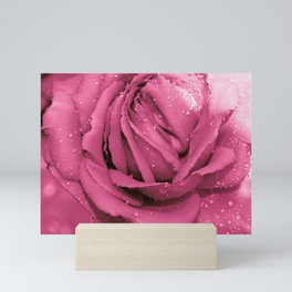 Fresh ROSE - AMORE MIO Mini Art Print