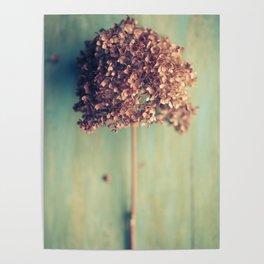 Autumnal Light no.2 Poster