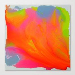 Happy colours 1 Canvas Print