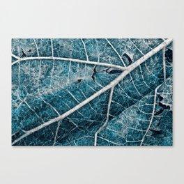 Frozen Winter Leaf Canvas Print