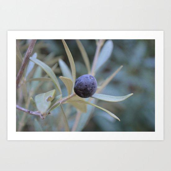 Olive Art Print