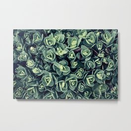 GREEN LEAVES PATTERN [plant nature photography] Metal Print