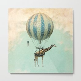 Sticking your neck out, giraffe Metal Print