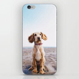 Man's Best Friend (Color) iPhone Skin