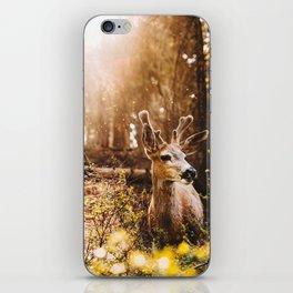a deer at the yosemite national parl iPhone Skin