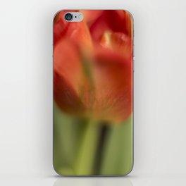 Orange Glow iPhone Skin