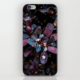 Barberry Adorned iPhone Skin