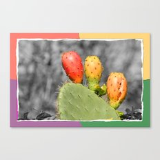 Three Spiky Ones Canvas Print