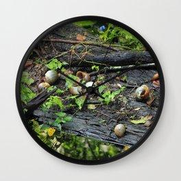 Snail Shell Aftermath Wall Clock