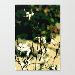 White wild flowers Canvas Print