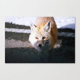 into my soul Canvas Print