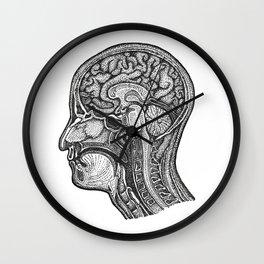 Medical Cross Section Morbid Wall Clock