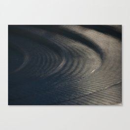 Water feature Canvas Print