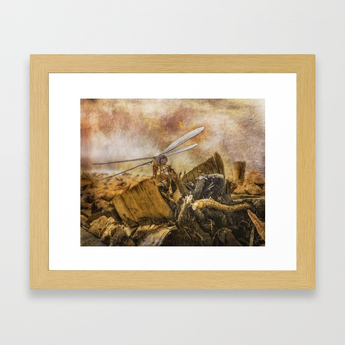 Dragonfly Dreams Framed Art Print