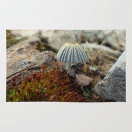 Tiny Toadstool Rug