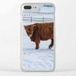 Are you looking at me, Scotish Highland Cow Clear iPhone Case
