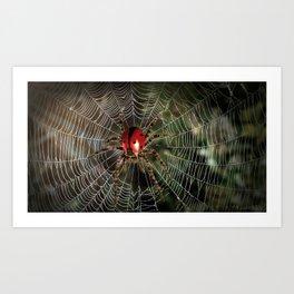Ladyspider Art Print