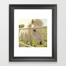 It's a  wild hair day! Framed Art Print