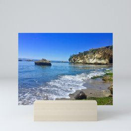 Shell Beach Mini Art Print