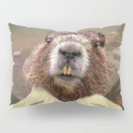 Hudson Beaver Pillow Sham