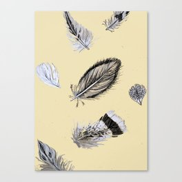 Creamy feathers Canvas Print