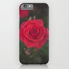 Red Rose Slim Case iPhone 6s