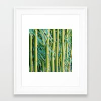 bamboo Framed Art Prints featuring Bamboo by Laura Ruth