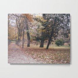 Autumn in Madrid Metal Print