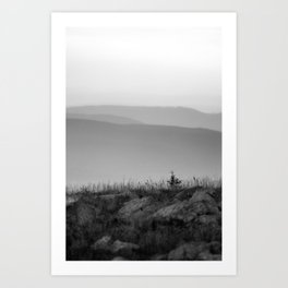 View in the mountains Art Print