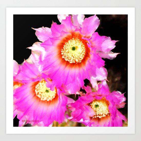 My Cactus Is Blooming! Art Print