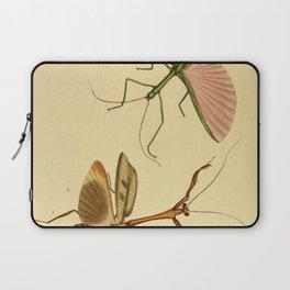 Naturalist Stick Bugs Laptop Sleeve