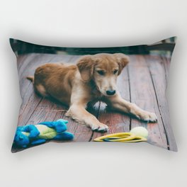 Harvey Rectangular Pillow