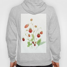 Wild Strawberries Hoody