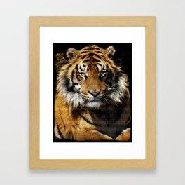 Tiger, Tiger - Big Cat Art Design Framed Art Print