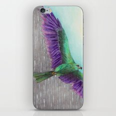 Rain Bird iPhone & iPod Skin