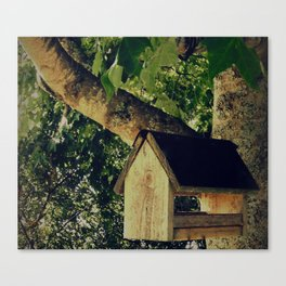 The Old Bird House Canvas Print
