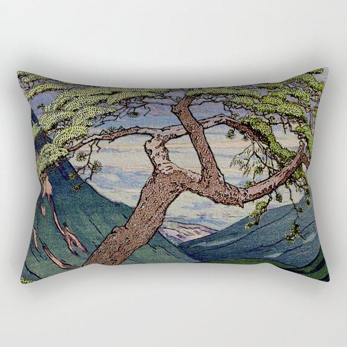 The Downwards Climbing Rectangular Pillow
