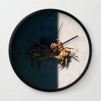 crab Wall Clocks featuring Crab by Bor Cvetko