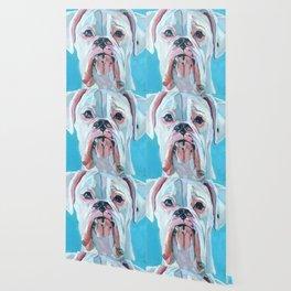 Otis the White Boxer Wallpaper
